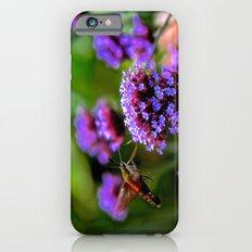 The Hummingbird Moth Slim Case iPhone 6s