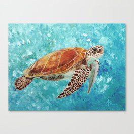 Turtle Swimming Canvas Print