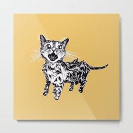 Cat After Bath Metal Print