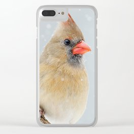 Female Northern Cardinal Clear iPhone Case