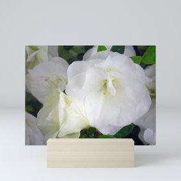 White Azalea Mini Art Print