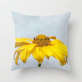 Rain Drops on Daisy Throw Pillow