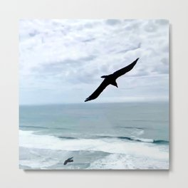 Everybody Needs a Wingman Crows Flying Photo  Metal Print