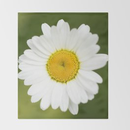 Beautiful Daisy Natural Green Background #decor #society6 #buyart Throw Blanket