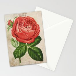 Red Hybrid Perpetual, Paul Neyron Rose Vintage Print Stationery Cards