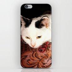Human care iPhone & iPod Skin