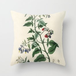 Bittersweet (Solanum dulcamara)  from Medical Botany (1836) by John Stephenson and James Morss Churc Throw Pillow