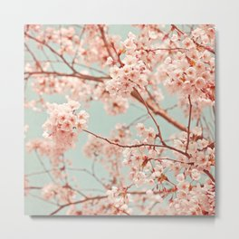 blossoms all over Metal Print