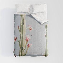 Cereus Cactus Blush Comforters