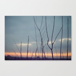 Dreamy Sunrise Canvas Print