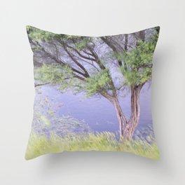 Te Rau Puriri Regional Park dusk tranquil tree Throw Pillow