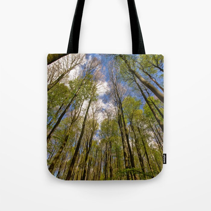 looking up to the trees in the forest Tote Bag