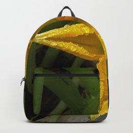 courgette étoilée (star zucchini)  Backpack