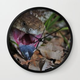 A Blue Tongue Lizard in Gingin, Western Australia Wall Clock