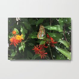 Fort Fisher Butterfly Metal Print