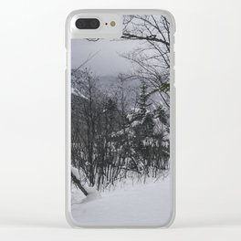 Winter in the Whites Clear iPhone Case
