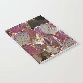 Purple Cactus Notebook