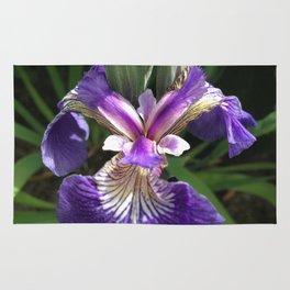 Alaska Wild Iris by Mandy Ramsey, Haines, Alaska Rug