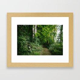 Relaxing in the Woods // Ohio Framed Art Print