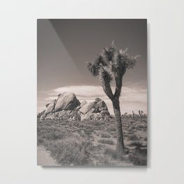 Joshua Tree Rocks Metal Print