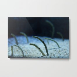 Garden of Eels Metal Print
