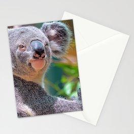Winking Koala Stationery Cards