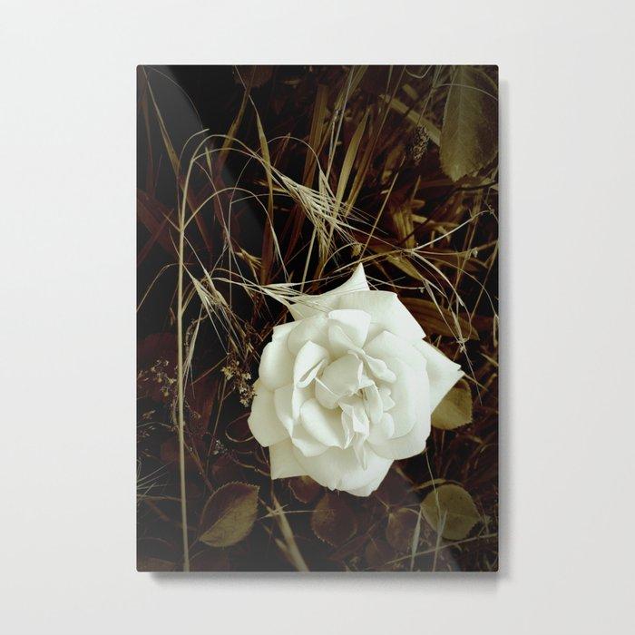 Vintage Rose And Wild Grasses Metal Print