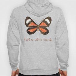 Butterfly - Cartea vitula ucayala Hoody