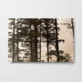 Almost Silhouettes at Sunset Metal Print
