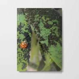 Speckles on Speckles Metal Print