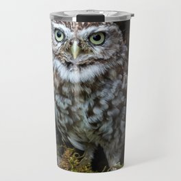 Owl in a tree hole Travel Mug
