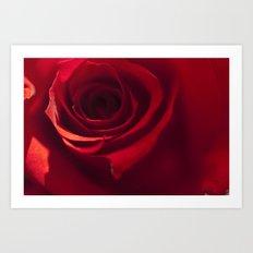 Red Rose Close Up Art Print