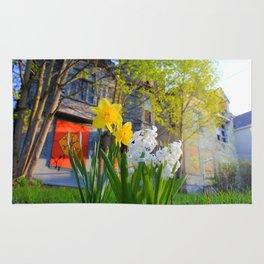 Daffodils and Dilapidation Rug
