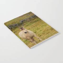 freedom Notebook