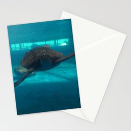 Hello Turtle Stationery Cards