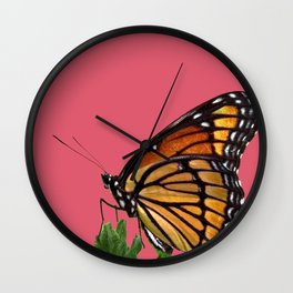 Milkweed Butterfly Wall Clock
