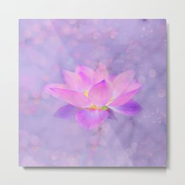 Lotus Emerging from the Water Metal Print