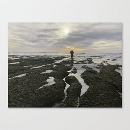 San Elijo Low Tidejo Canvas Print