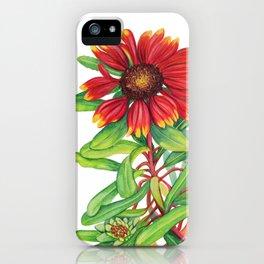 Sunset Daisy iPhone Case