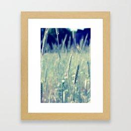 Meadow & Weed Framed Art Print
