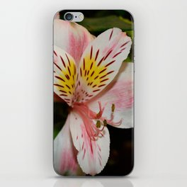 Tiger Lilly iPhone Skin