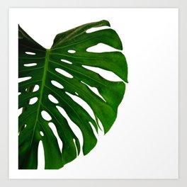 Banana Leaf (Color) Art Print