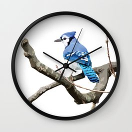 Blue Jay in Branches Wall Clock