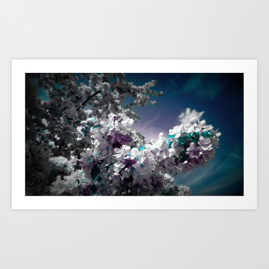 Flowers Purple & Teal Art Print