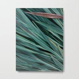 Zen Grass Metal Print