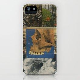 Mesopotamia iPhone Case