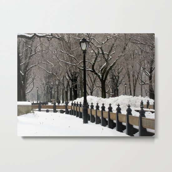 """""""Central Park in Winter"""" Metal Print"""
