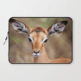 Cute litte Impala, Africa wildlife Laptop Sleeve