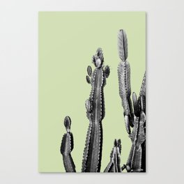 green cactus friend Canvas Print