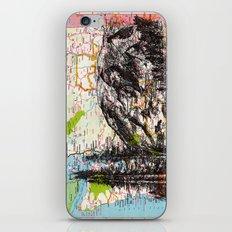 Washington iPhone & iPod Skin